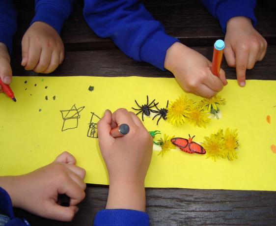 outdoor lessons - minibeasts